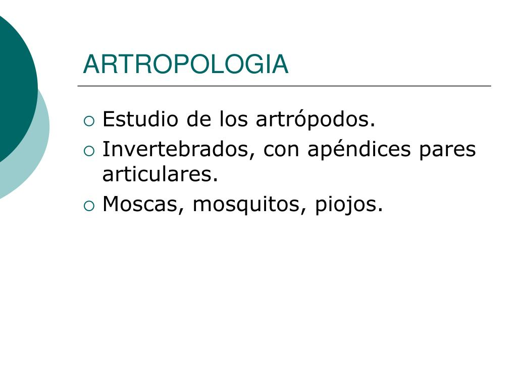 ARTROPOLOGIA