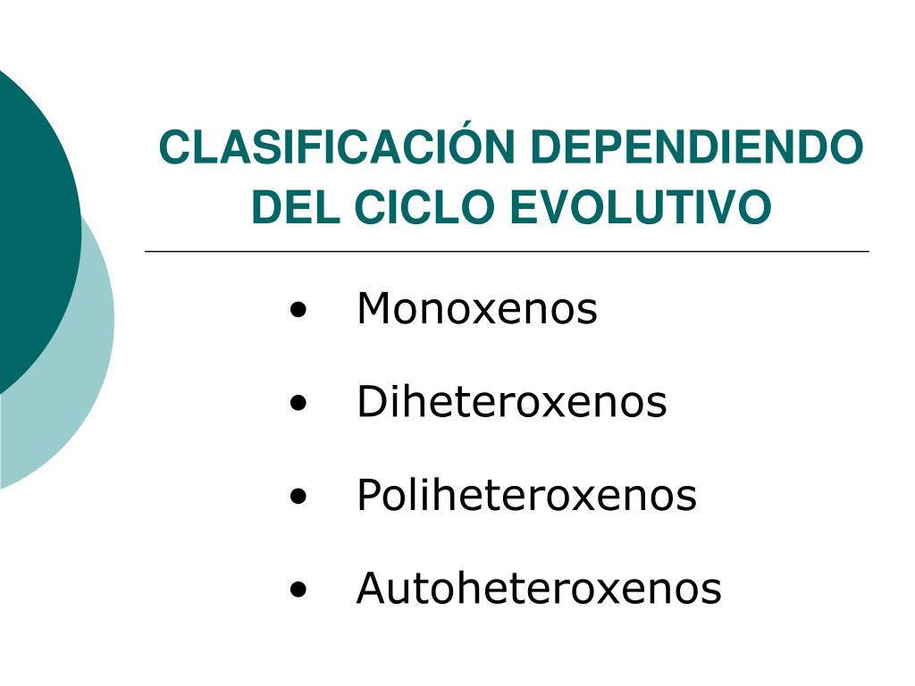 CLASIFICACIÓN DEPENDIENDO DEL CICLO EVOLUTIVO
