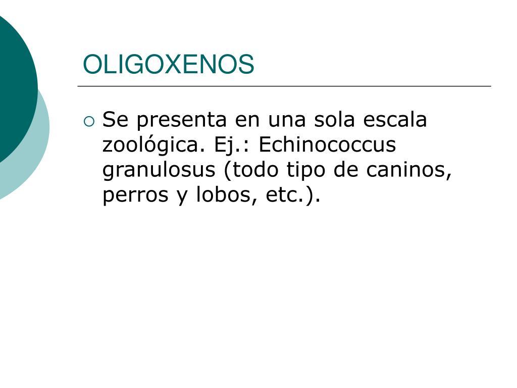 OLIGOXENOS