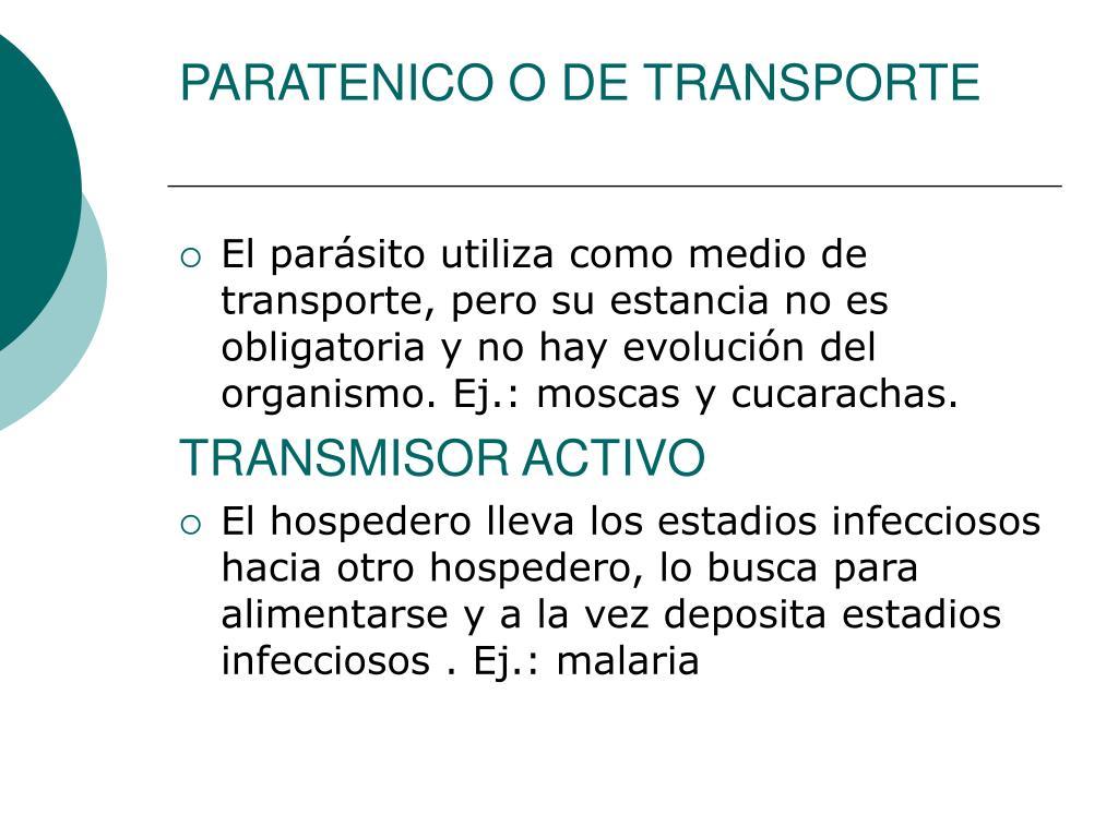 PARATENICO O DE TRANSPORTE