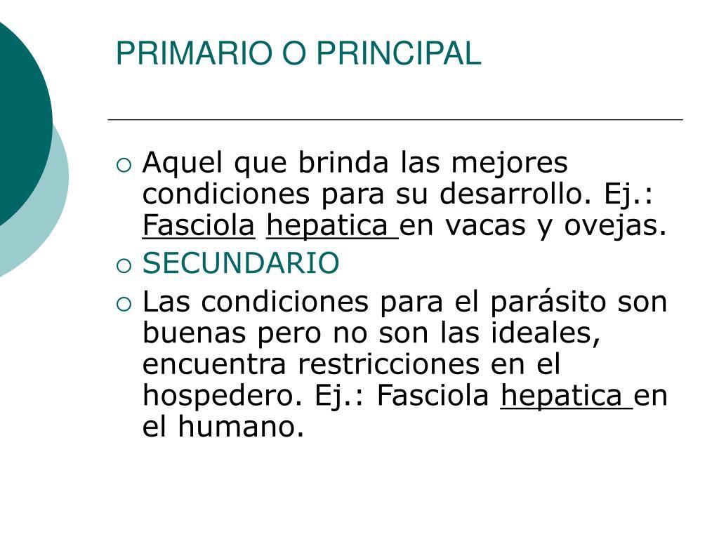 PRIMARIO O PRINCIPAL