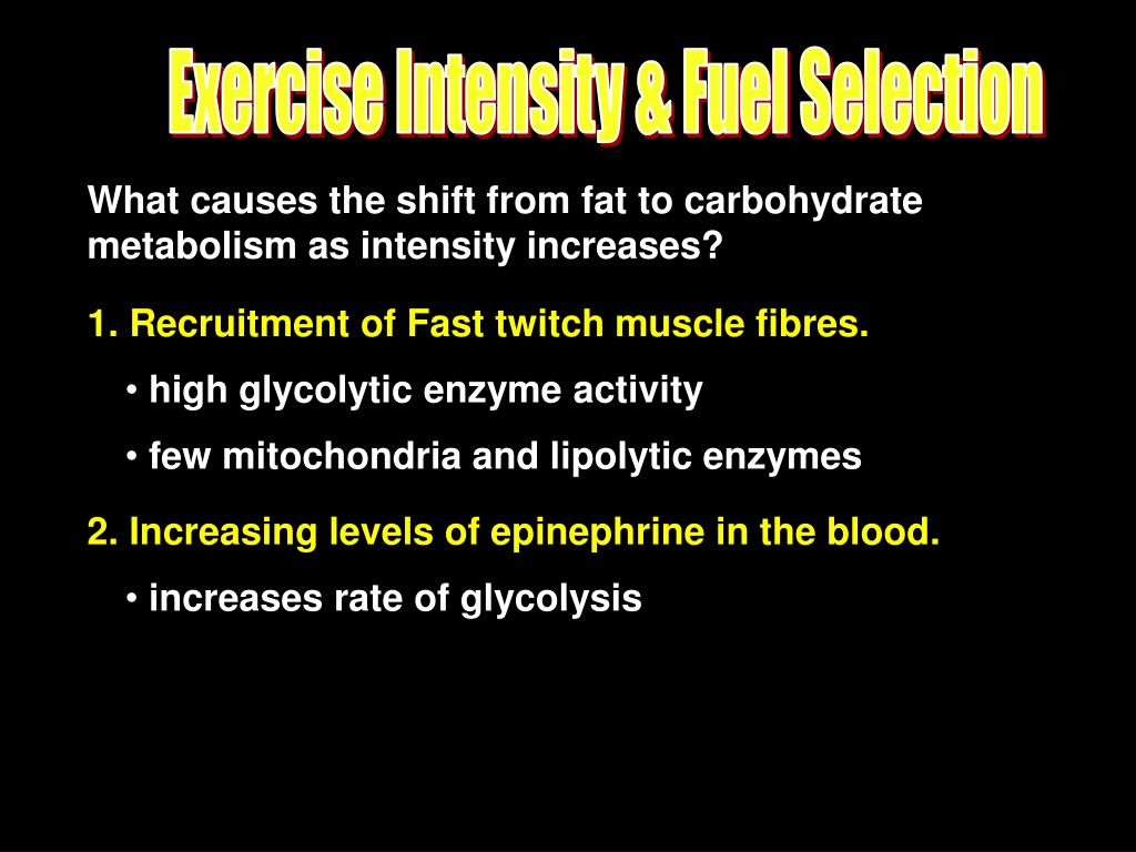 Exercise Intensity & Fuel Selection