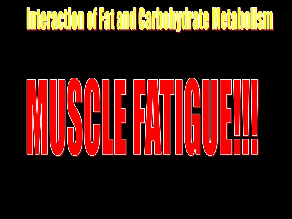 MUSCLE FATIGUE!!!