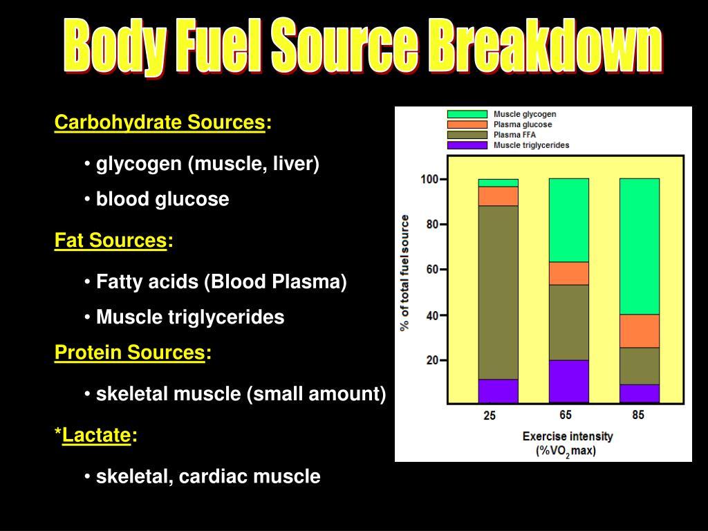 Body Fuel Source Breakdown