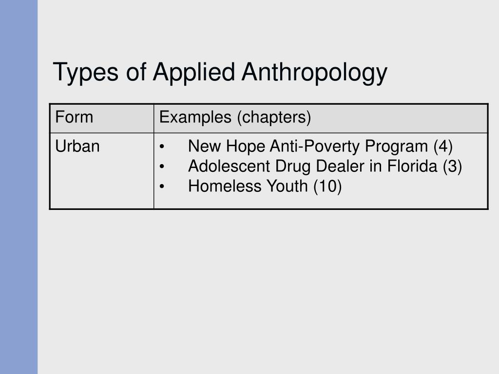 anthropology chapter 1 4 essay