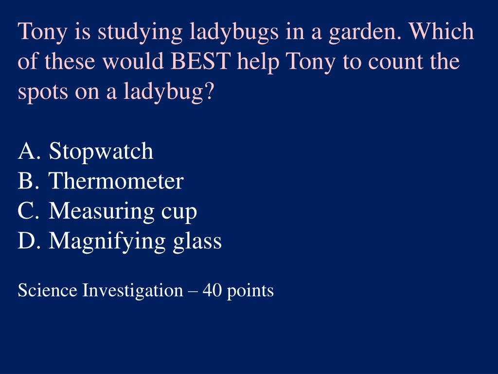 Tony is studying ladybugs in a garden. Which of these would