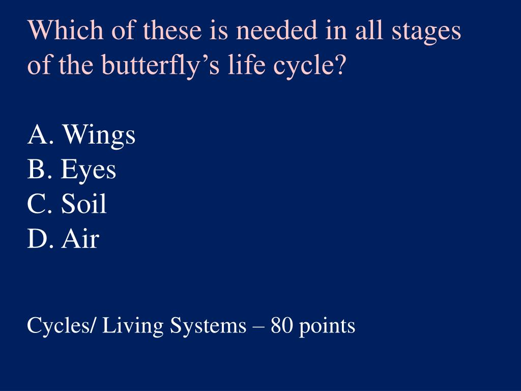 Which of these is needed in all stages of the butterfly's life cycle?