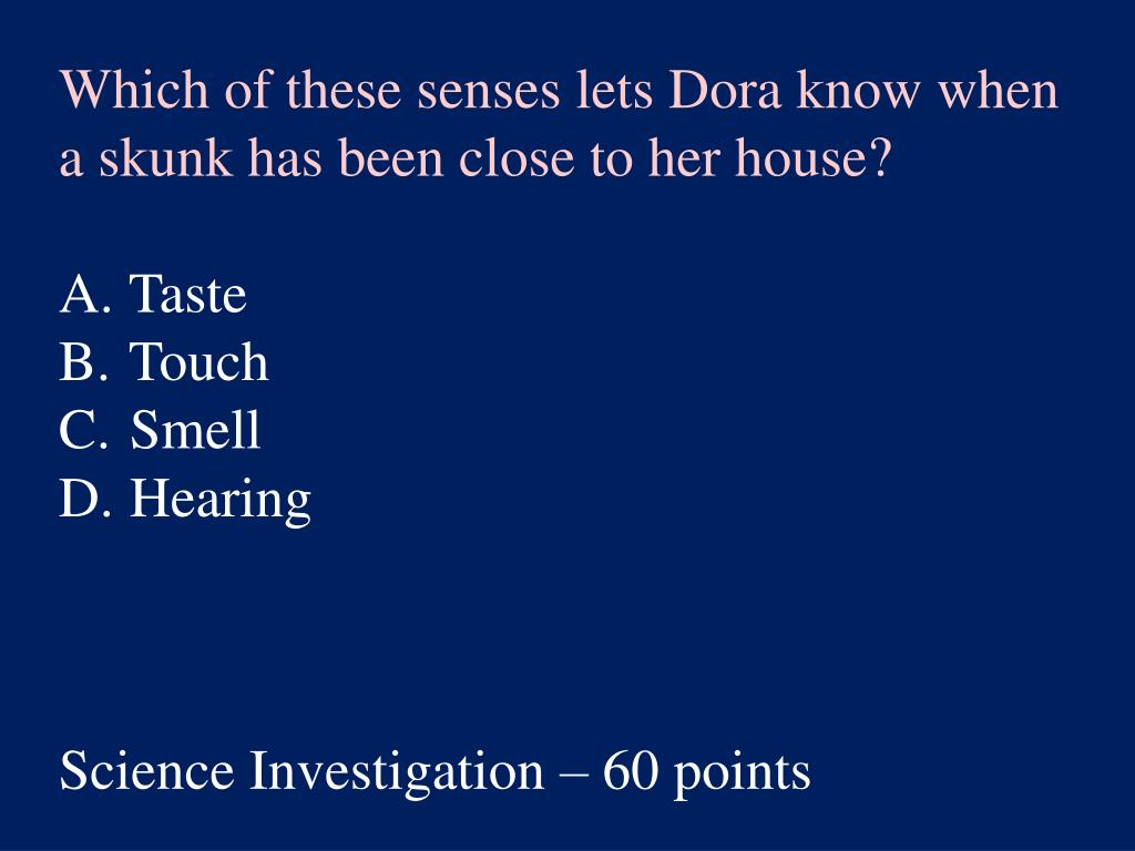 Which of these senses lets Dora know when a skunk has