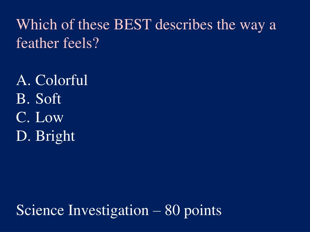 Which of these BEST describes the way a feather feels?