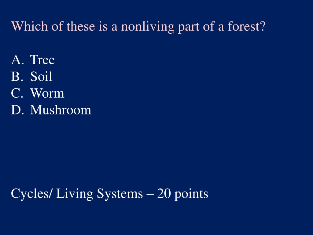 Which of these is a nonliving part of a forest?