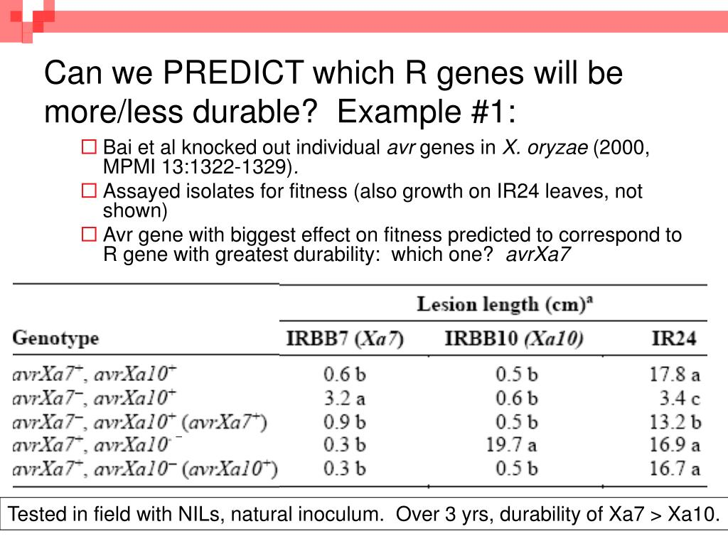 Can we PREDICT which R genes will be more/less durable?  Example #1: