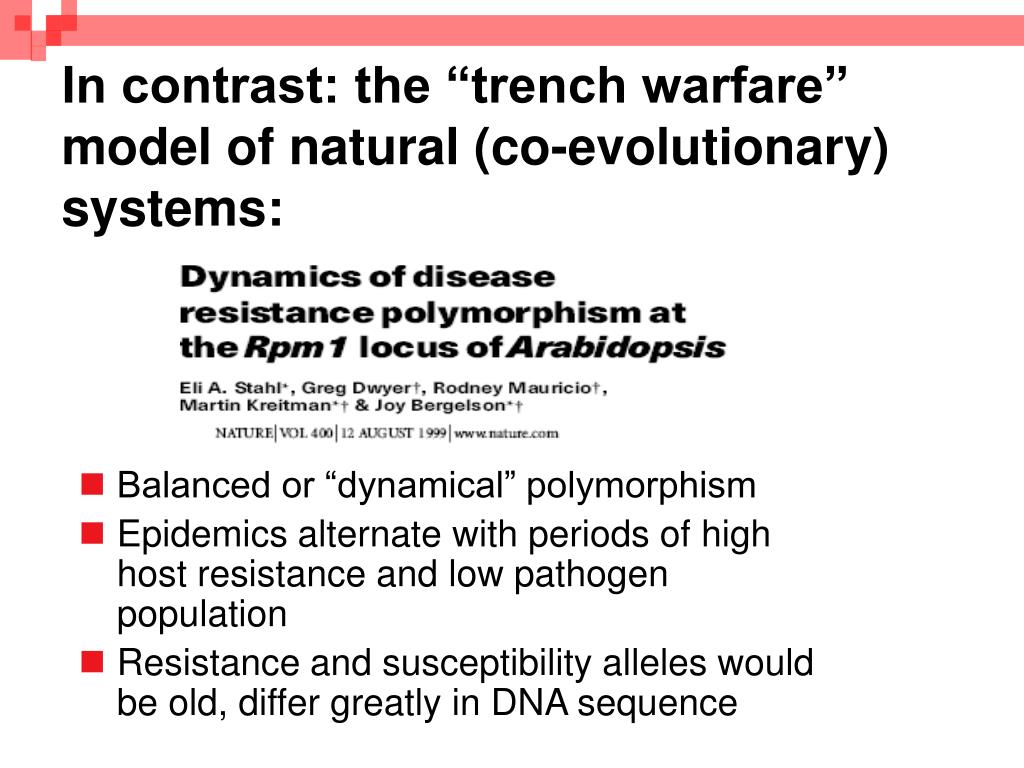 "In contrast: the ""trench warfare"" model of natural (co-evolutionary) systems:"