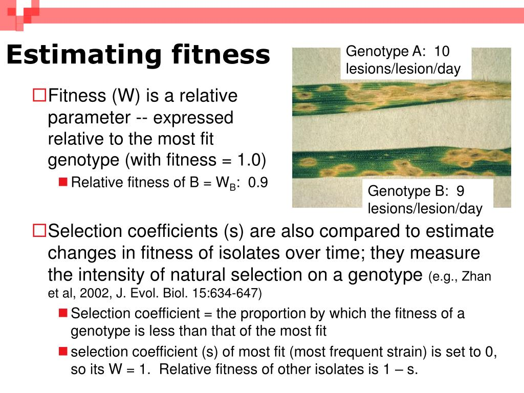 Estimating fitness