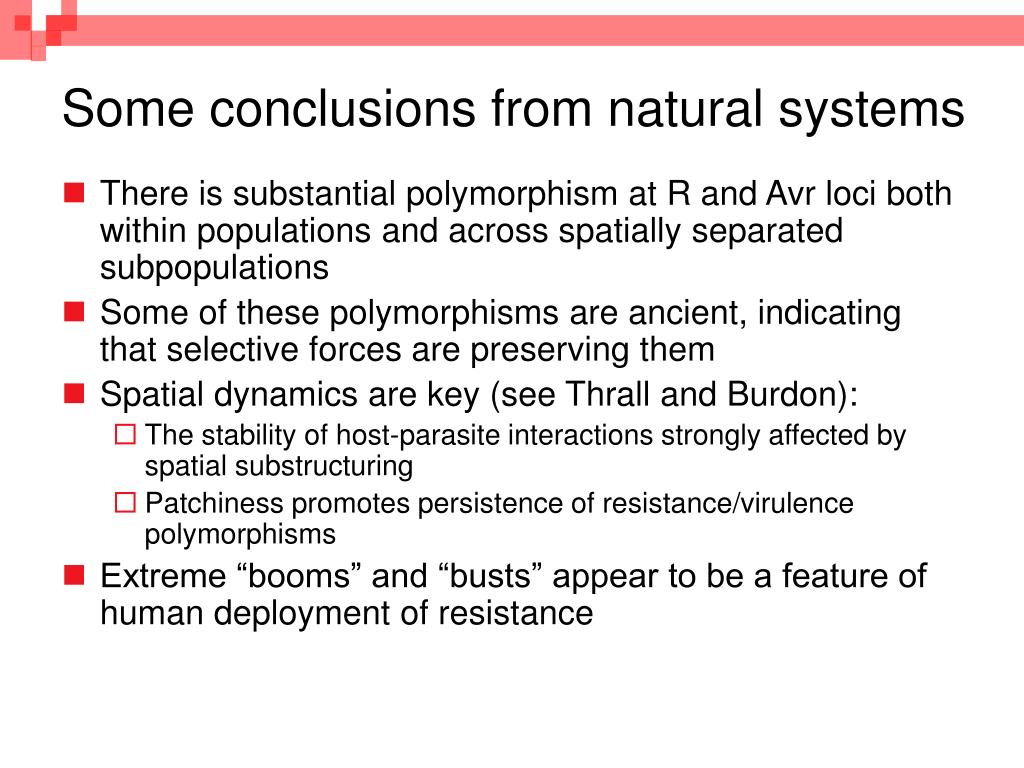 Some conclusions from natural systems
