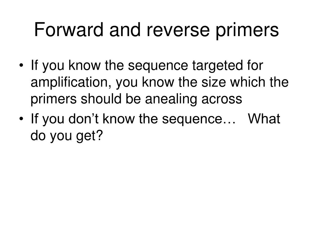 Forward and reverse primers