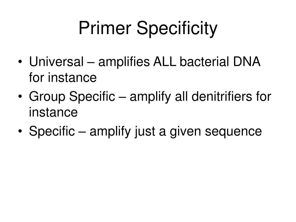 Primer Specificity