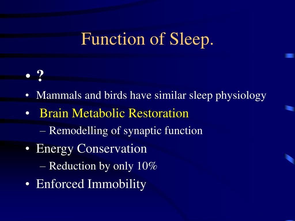 Function of Sleep.