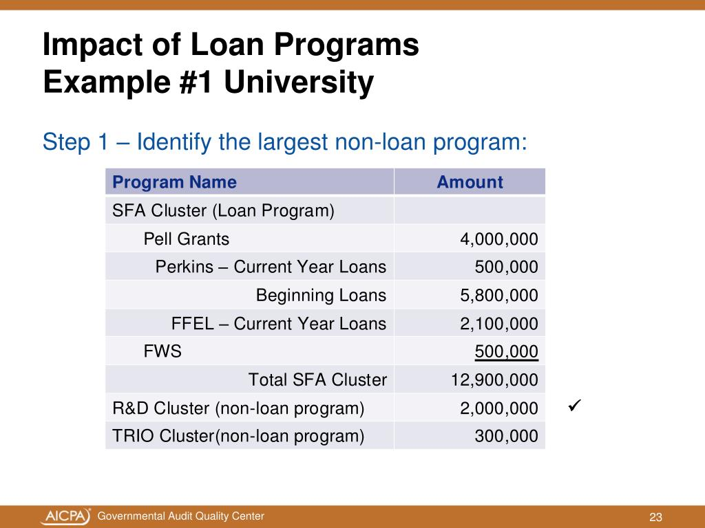 Impact of Loan Programs