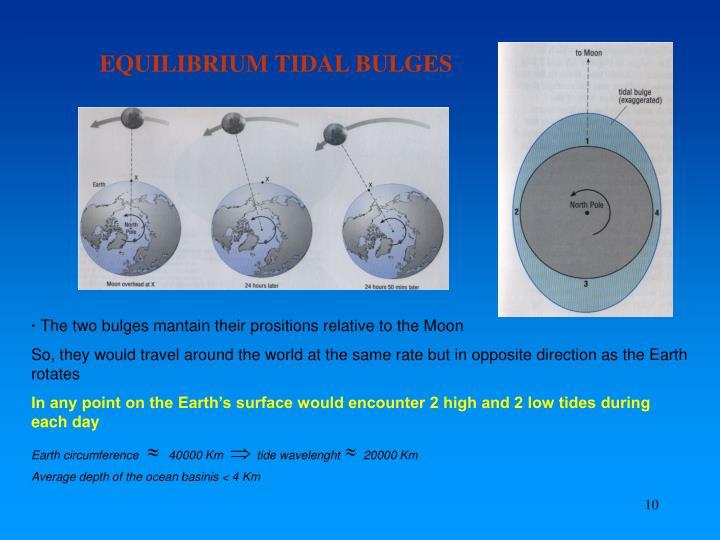 EQUILIBRIUM TIDAL BULGES