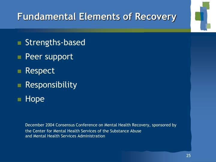 Fundamental Elements of Recovery
