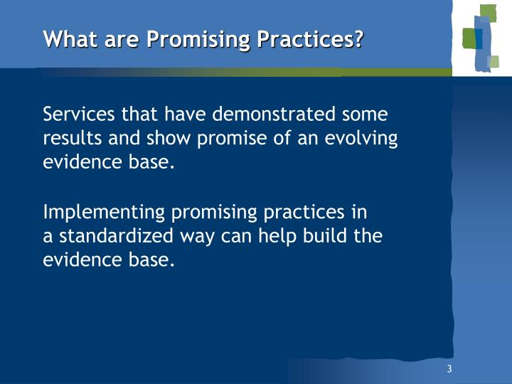 What are Promising Practices?
