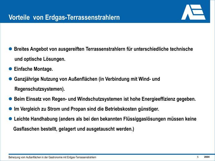 Vorteile  von Erdgas-Terrassenstrahlern