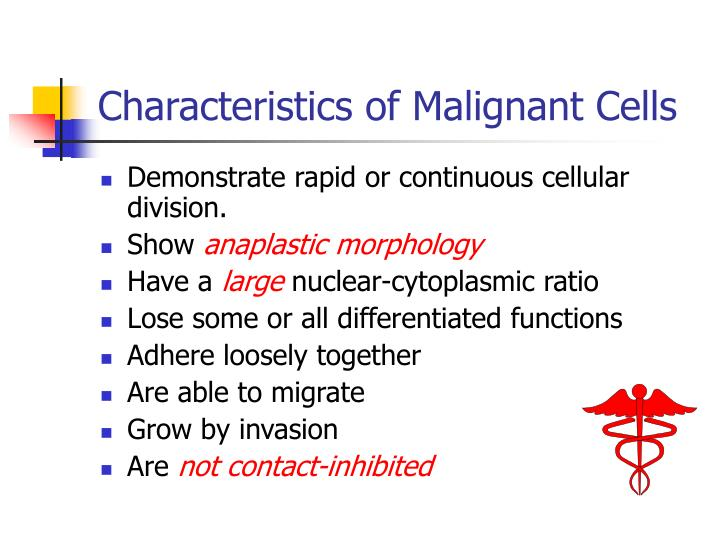 Characteristics of Malignant Cells