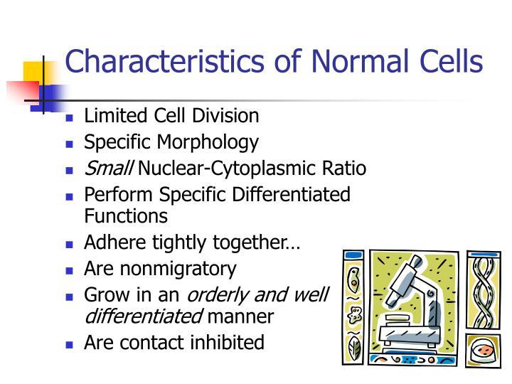 Characteristics of Normal Cells