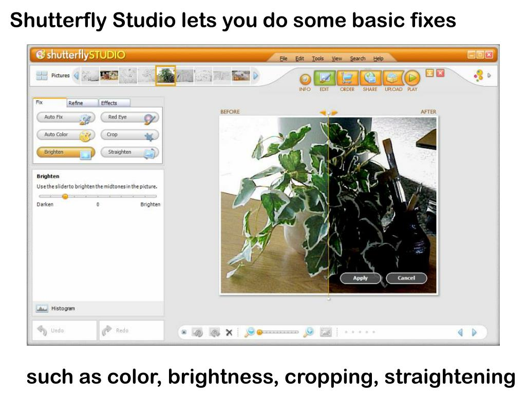 Shutterfly Studio lets you do some basic fixes
