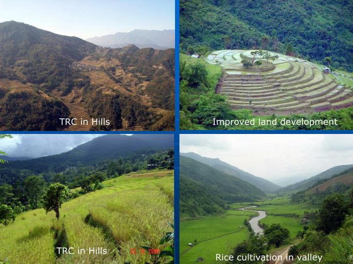 TRC in Hills