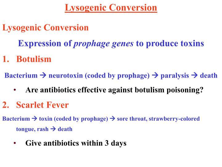 Lysogenic Conversion