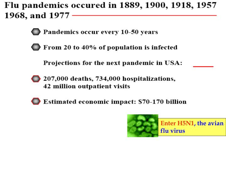 Enter H5N1