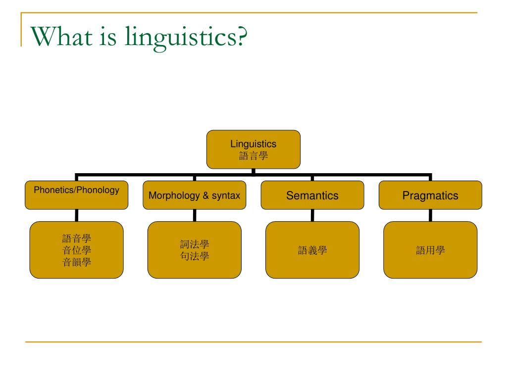 What is linguistics?