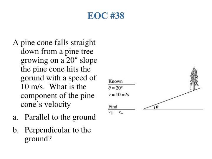 EOC #38