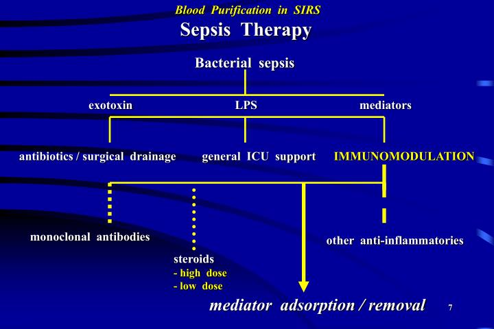 Sepsis  Therapy