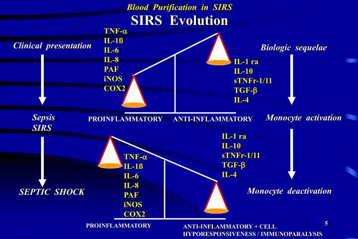 SIRS  Evolution