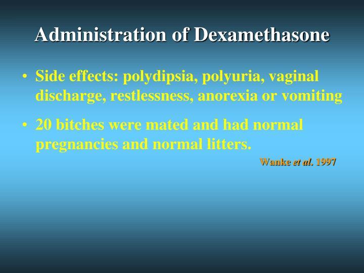 Dexamethasone For Dogs Side Effects