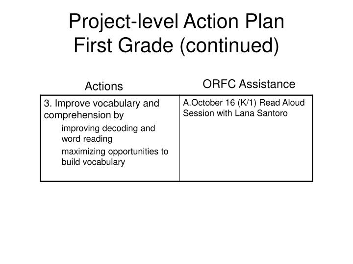 Project-level Action Plan