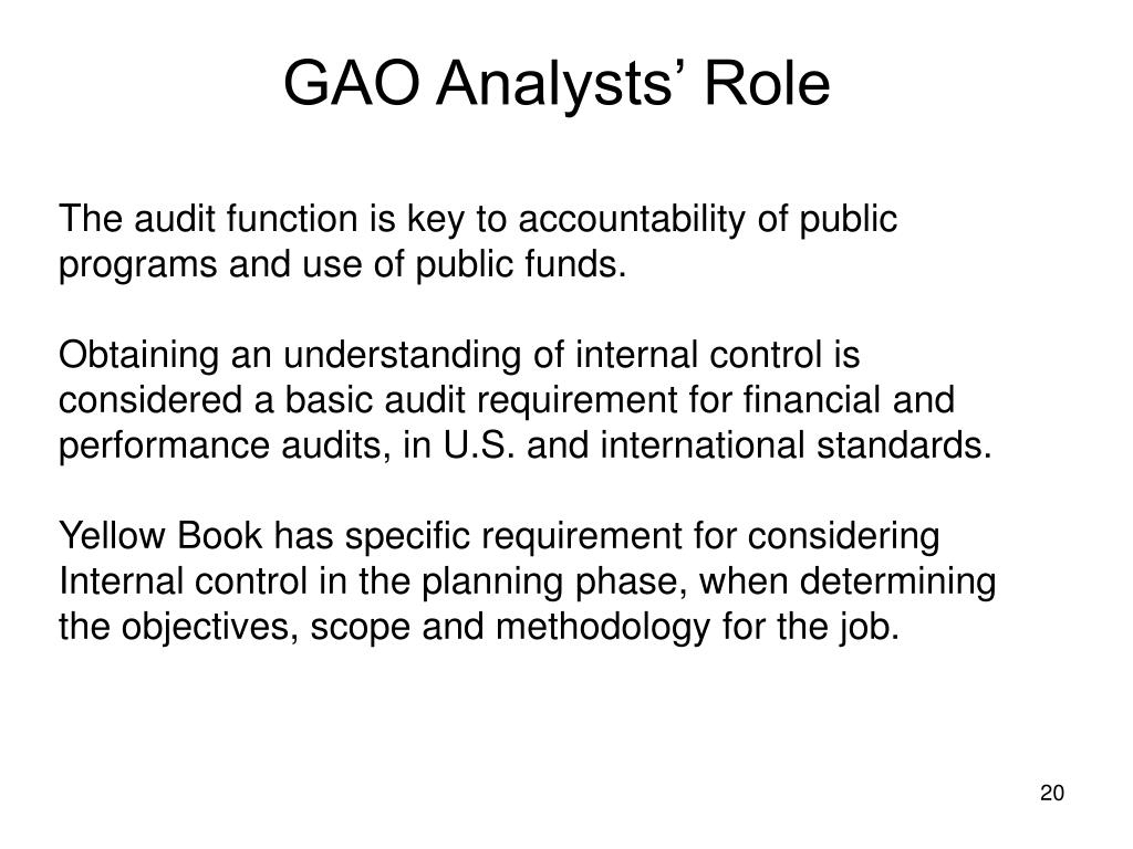 GAO Analysts' Role