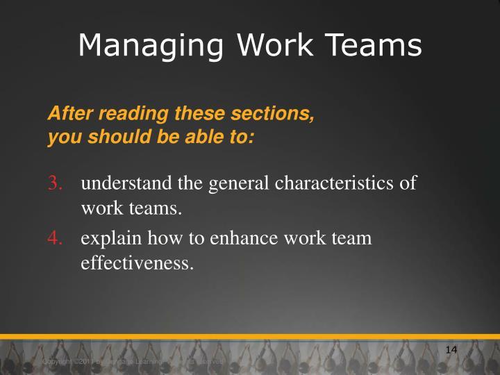 Managing Work Teams