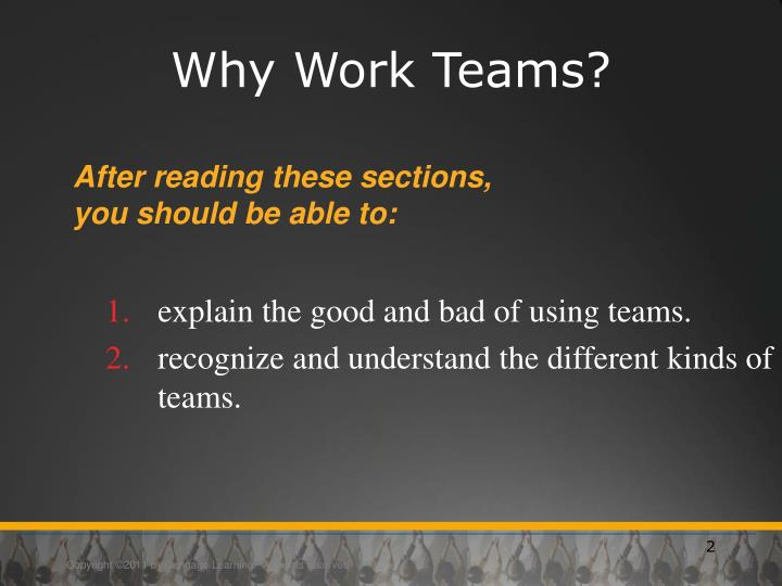 Why Work Teams?