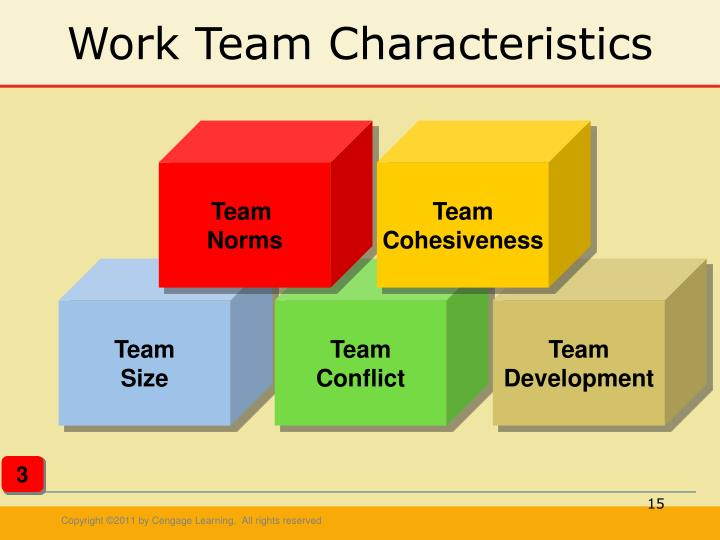 Work Team Characteristics