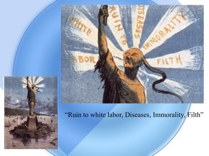 """Ruin to white labor, Diseases, Immorality, Filth"""