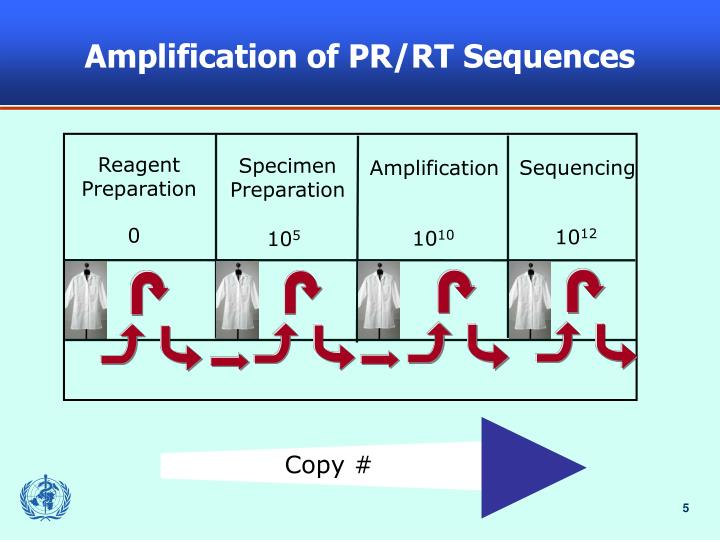 Amplification of PR/RT Sequences