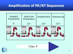 amplification of pr rt sequences