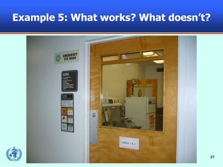 Example 5: What works? What doesn't?