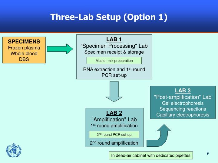 Three-Lab Setup (Option 1)