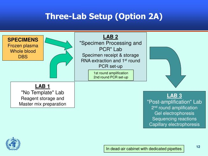 Three-Lab Setup (Option 2A)