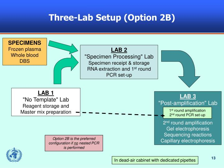 Three-Lab Setup (Option 2B)