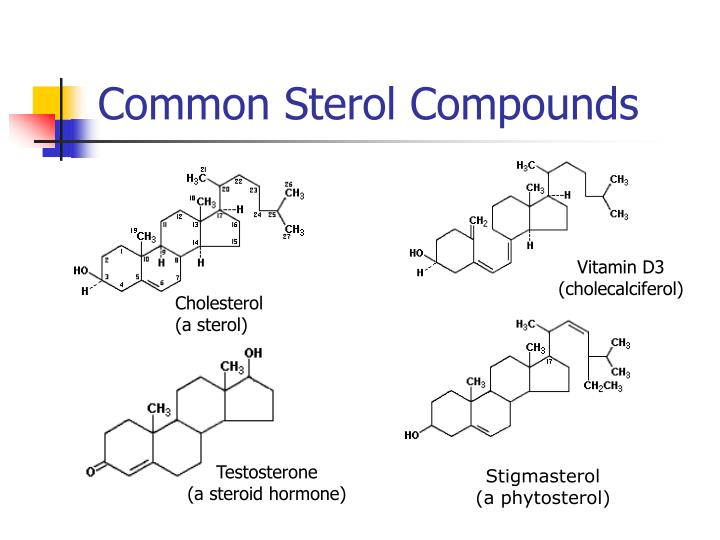 Common Sterol Compounds